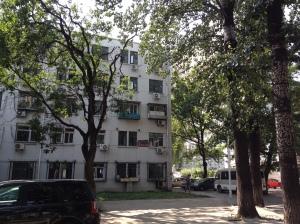 Chinese university 8